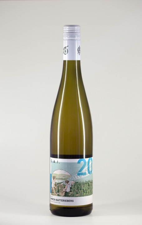 2010 Riesling C.A.I.